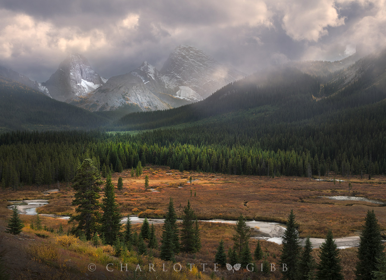 Why Landscape Photographers Should Expose To The Right