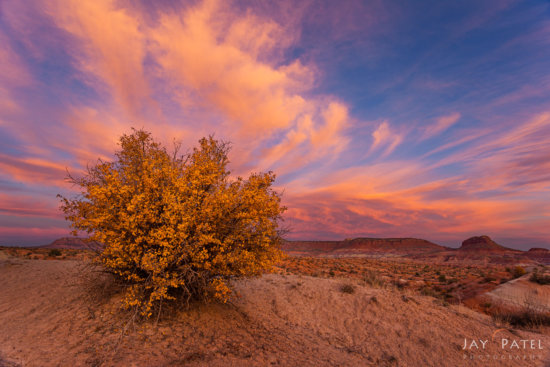 Fall Photography at Sunset at Paria Townsite, Grand Staircase-Escalante, Utah by Jay Patel