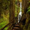 Landscape photography from Olympic National Park, Washington by Jay Patel