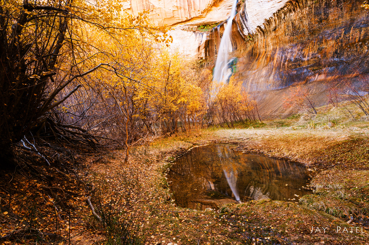 Camera exposure without circular polarizer to capture reflections in the pond, Calf Creek Falls, Utah by Jay Patel