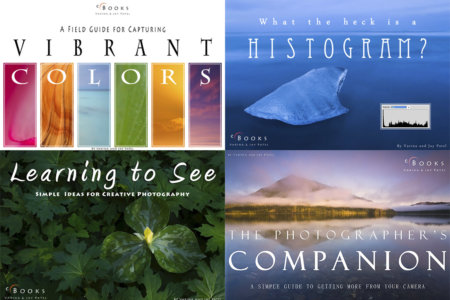 Apprentice Series Nature Photography eBooks