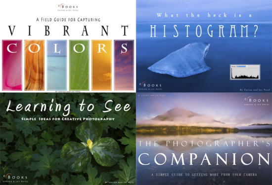 Nature Photography Business Offering: Downloadable eBooks Cover Pages