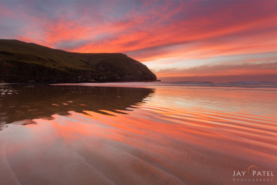 Nature photo with Orange color cast from Cannibal Bay, New Zealand