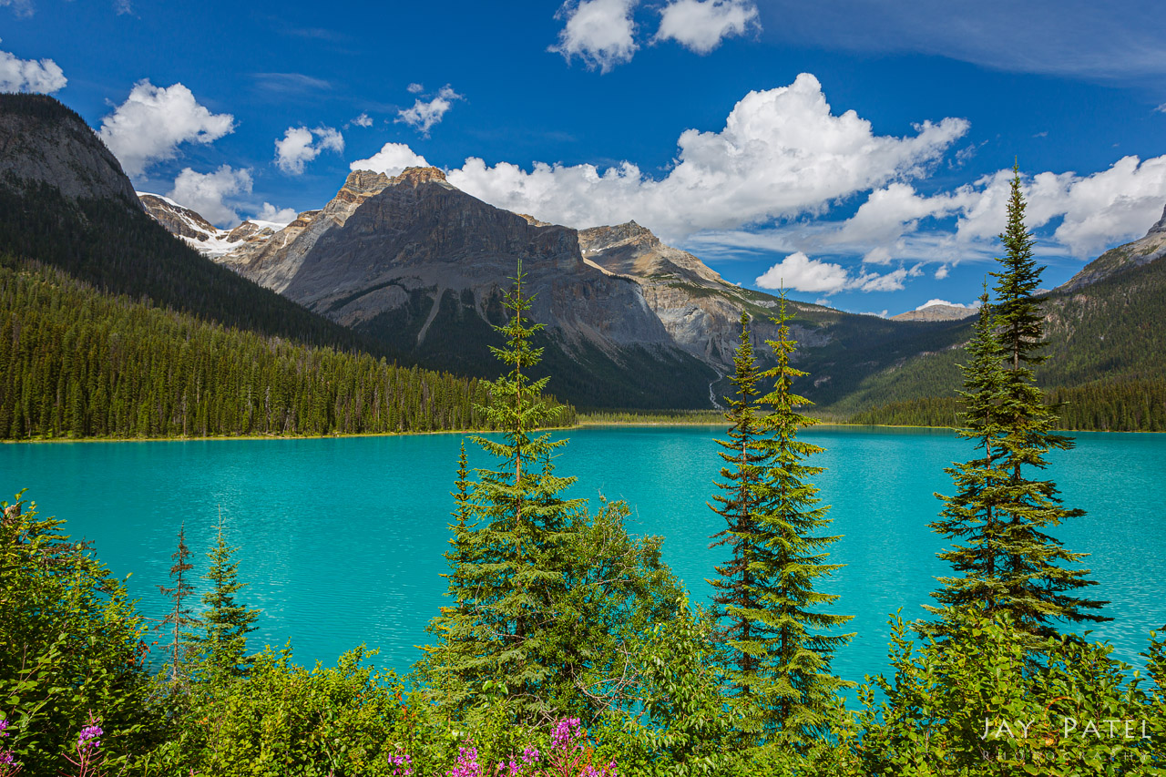 Landscape photography in harsh but balanced light Emerald Lake, Yoho National Park, British Columbia, Canada by Jay Patel