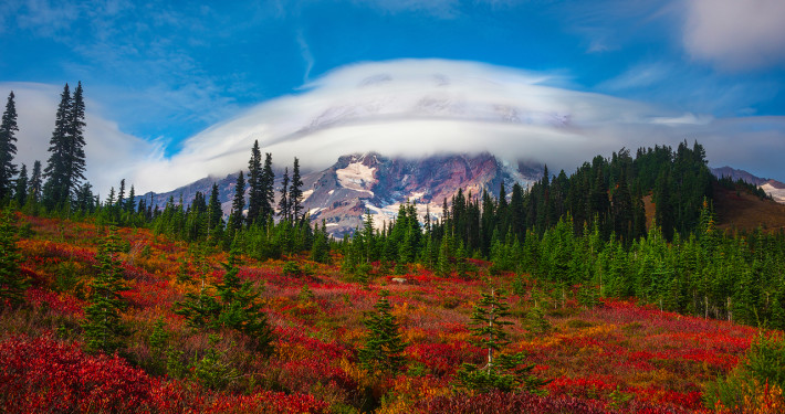 Fall Foliage Photography from Mt. Rainier National Park, Washington by Kevin McNeal