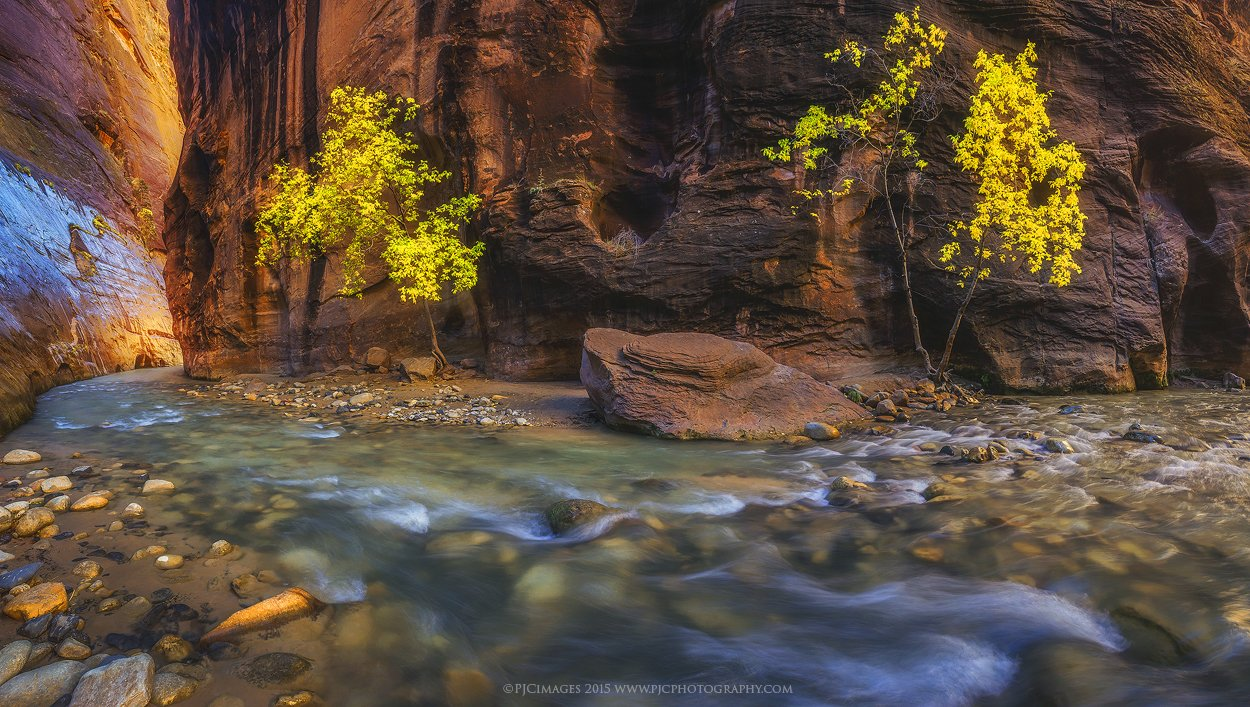 Landscape photography using live view mode from Zion Narrows by Peter Coskun