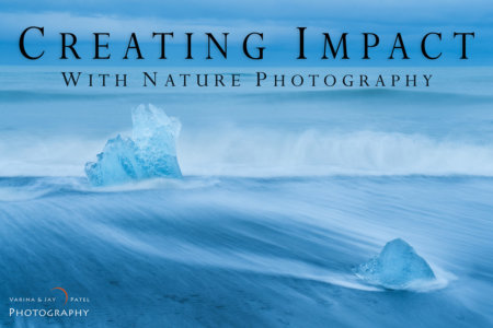 Cover for Nature Photography Tutorial about Composition
