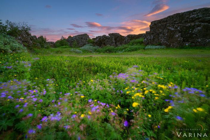 Landscape photography from Thingvellir National Park, Iceland by Varina Patel