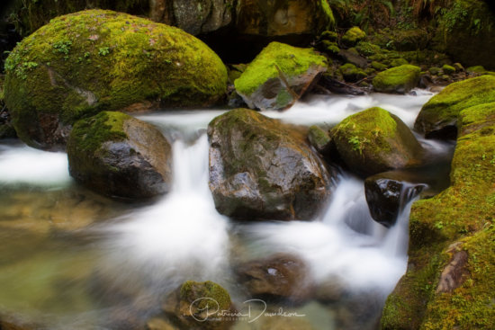 Flowing creek water nestled among mossy rocks at near the base of Elk Creek Falls and the Coquille River. Southeast of Coos Bay, in Powers, Oregon.