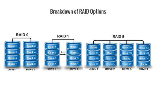 Raid backup options for Nature Photographers by Jay Patel
