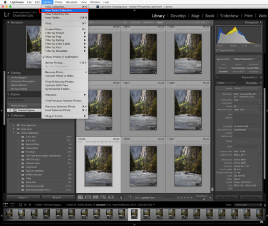 Collection in Lightroom for nature photography by Charlotte Gibb