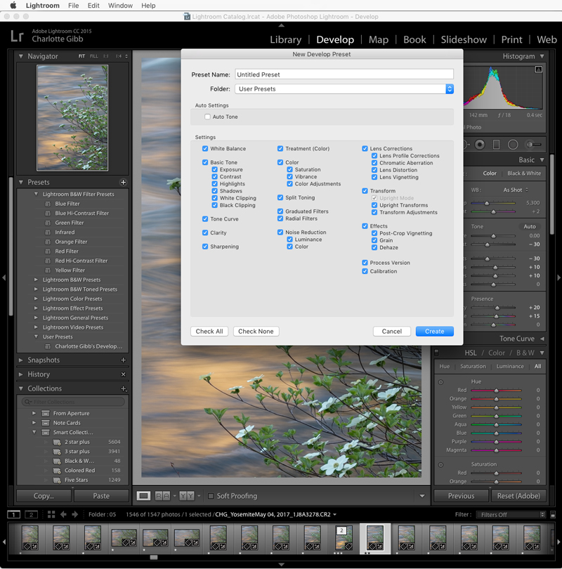 Lightroom new preset setting selection panel
