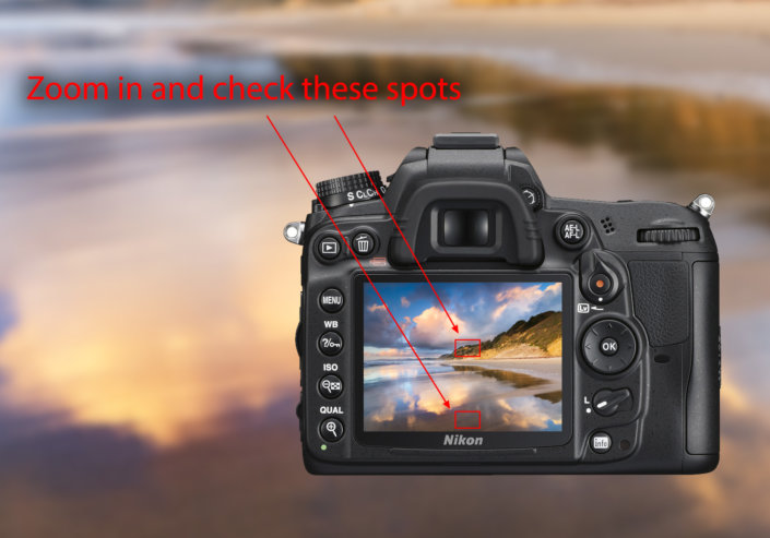 Cover photo for Nature Photography blog article about autofocus and manual focus setting by Josh Cripps