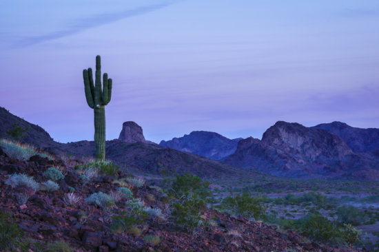 Low light photography at Quartzsite, Arizona by Anne McKinnell