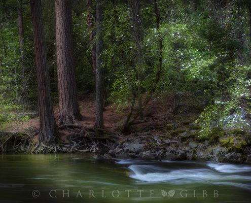 Landscape Photography Blog Post on Invoking Emotion by Charlotte Gibb
