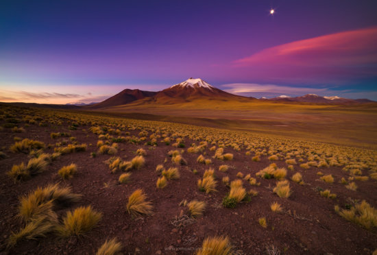 Altiplano, Chile captured with a Telephoto Lens by Josh Cripps