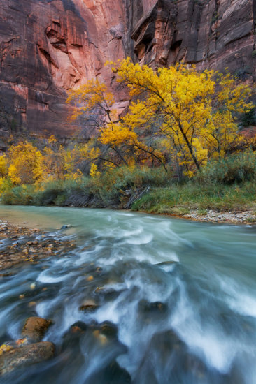 A wide angle camera lens helps take in this grand scene in Zion National Park