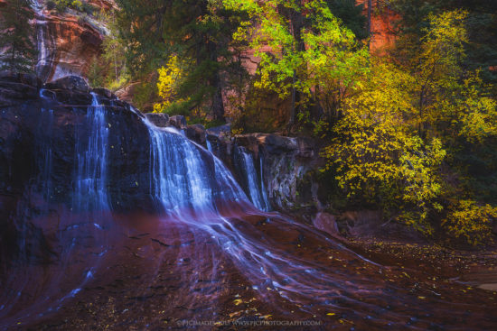 Photographing Fall Colors - Zion National Park