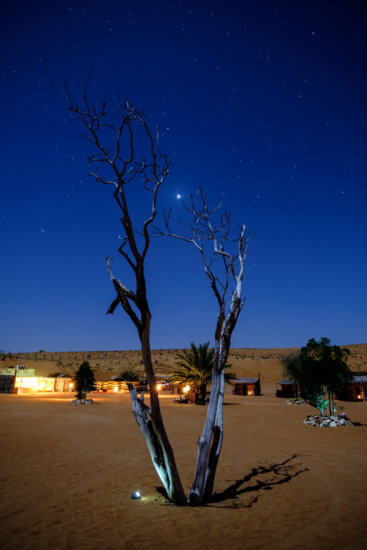 Night photography of stars with foreground lit by moonlight at Sharqiya Sands, OmanSharqiya Sands (Wahiba Sands), Oman