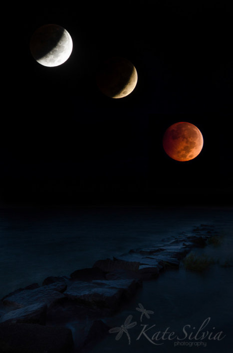 Night photography of Lunar Eclipse by Kate Silvia