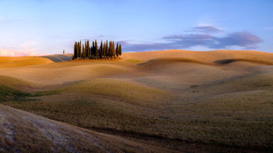 Photographing Tuscany: Copse of cypresses, Val d'Orcia