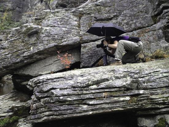 Linville Falls Camera Bag Waist Belt