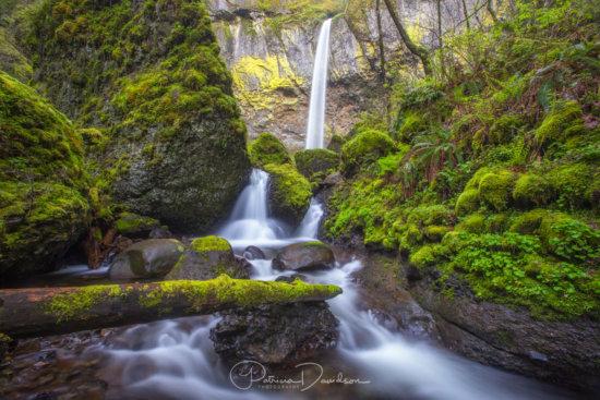 Landscape Photography by Patricia Davidson