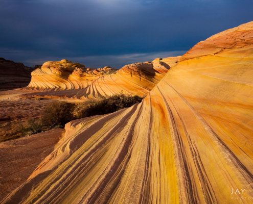 Landscape photography from The Wave at Vermillion Cliffs, Arizona by Jay Patel