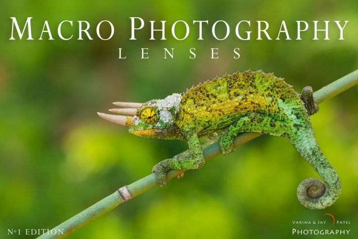 Macro Photography Lenses Cover