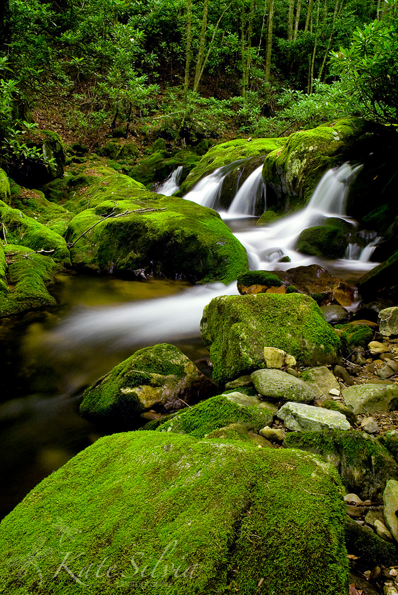 Waterfall photography by Kate Silvia