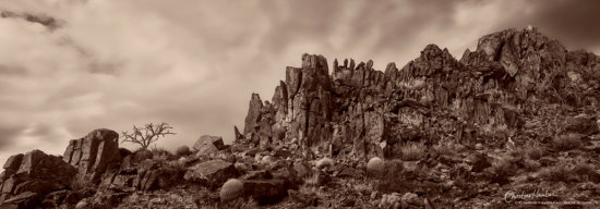 Panoramic Fine Art Landscape Photography, Mojave National Preserve by Christine Hauber