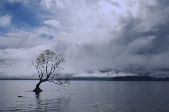 Landscape Photography of Lake Wanka in New Zealand by Jay Patel