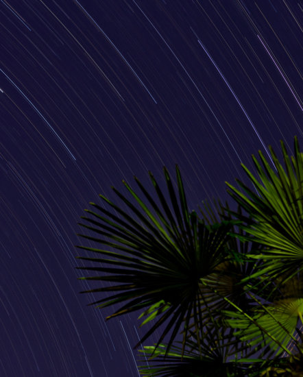 Image #2: Photographing Star Trails at Night by Kate Silvia