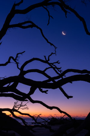Photographing moon at twilight at Jekyll Island by Kate Silvia