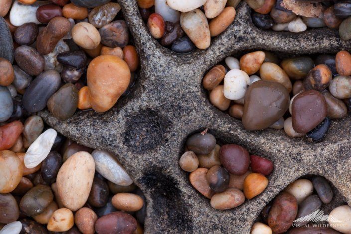 Macro Photography from Death Valley, California