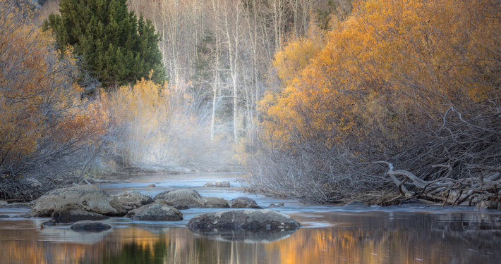 Cover photo for fall photography blog by Charlotte Gibb.