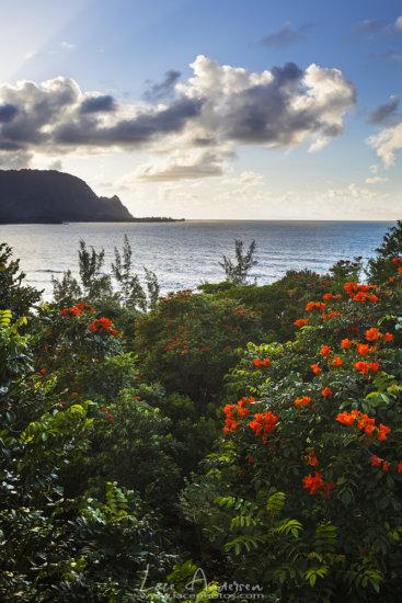 When Should a Landscape Photographer Go Pro Blog Post