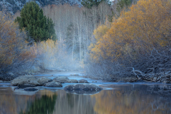 Photography fall colors using Auto White Balance setting on a camera by Charlotte Gibb