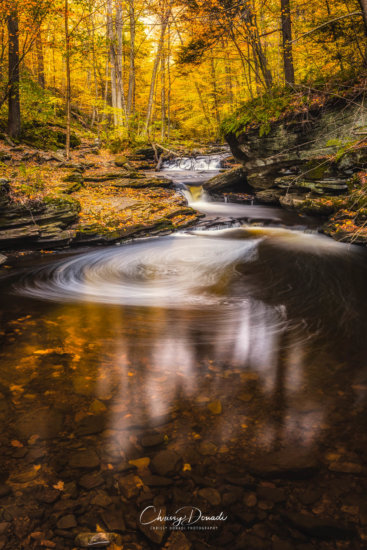 Long exposure Fall Photography with Clarity set to 100% by Chrissy Donadi