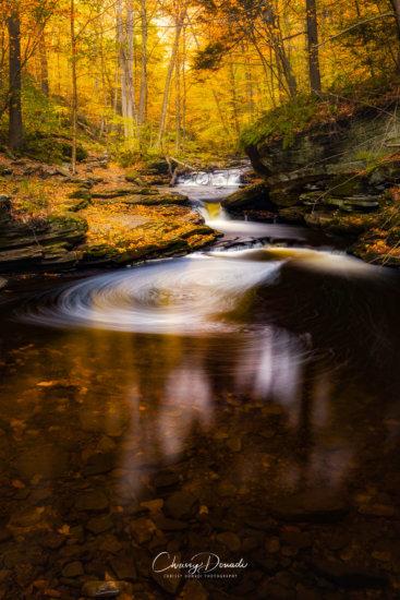 Fall Photo with Dehaze set to 100% by Chrissy Donadi