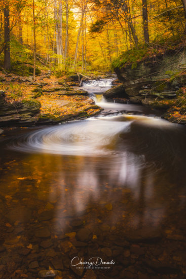 Long Exposure Fall Photography by Chrissy Donadi