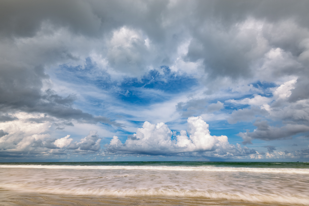 Nature photography from Little Talbot Island, Florida by Kate Silvia
