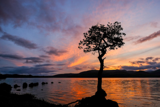 Milarrochy Bay, Loch Lomond, Scotland