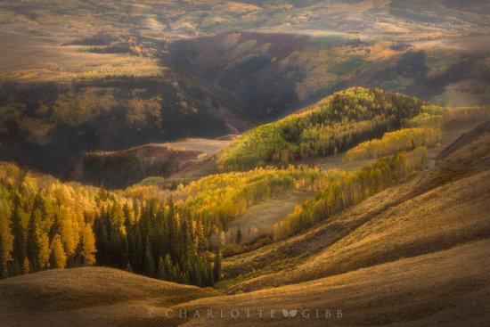 Dreamy Photo from Aspen, Colorado