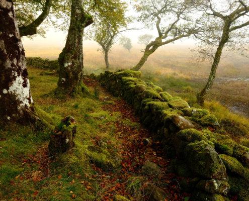 Near Kilchurn Castle, Loch Awe, Scotland