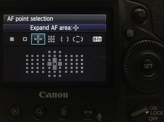 Focus settings by photographing birds in flight on a Canon Camera.