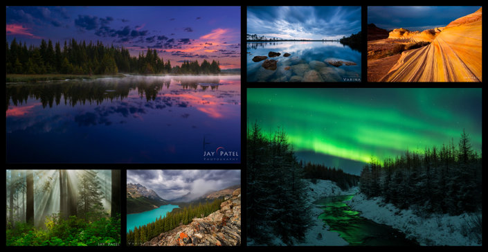 Nature Photography by Jay & Varina Patel