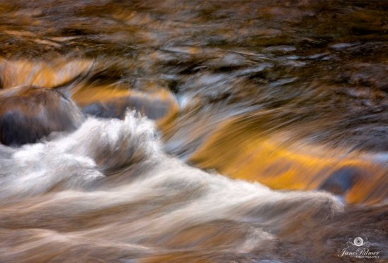Creative Landscape Photography Example of an Abstract from Smoky Mountain National Park