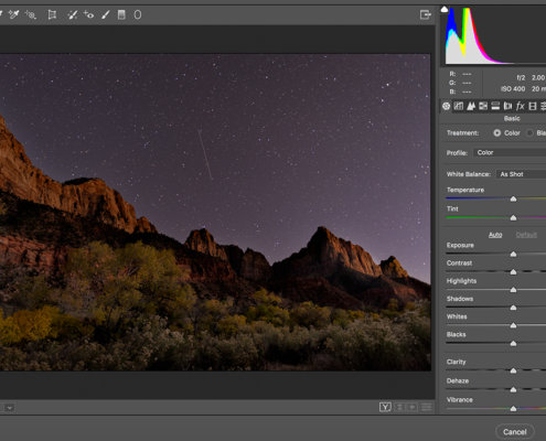 A Beginner's Guide to Histograms in Photography Blog Post by Kate Silvia