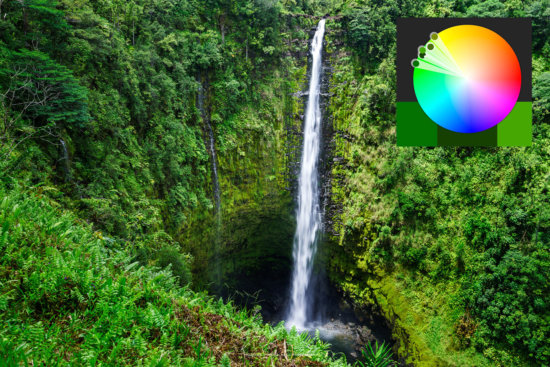 Example of Analogous Colors, Akaka Falls, Hawaii